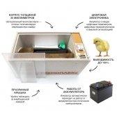 """72 vietų skaitmeninis inkubatorius """"BLIC NORMA"""""""